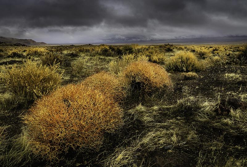 Spring Storm Nevada Desert